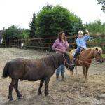 ponyrijden camping de eendenkooi